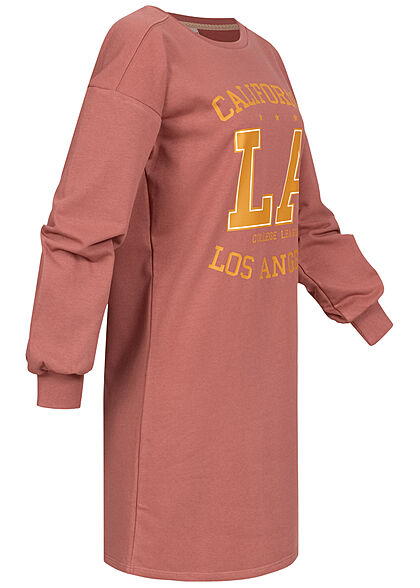 JDY by ONLY Damen kurzes Sweat Kleid mit Print apple butter rot